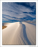 Spine, White Sands National Monument, New Mexico, 2010